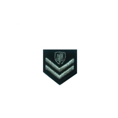 Sergeants (Investigation Officer) Lapel police