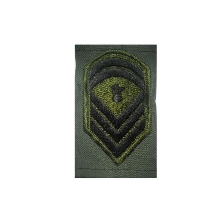 Epaulet JACKET sergeant SCHOOL (PAIR)