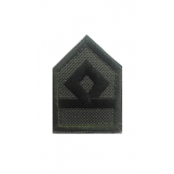PILOT OFFICER AVIATION LAPEL (WITH SKRATS)