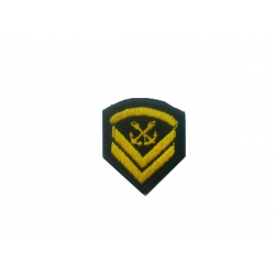 Coast Guard Petty Officer Lapel (with velcro)