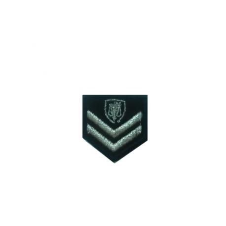 Υπαρχιφύλακας (Ανακριτικός Υπάλληλος) αστυνομίας πέτου με σκράτς