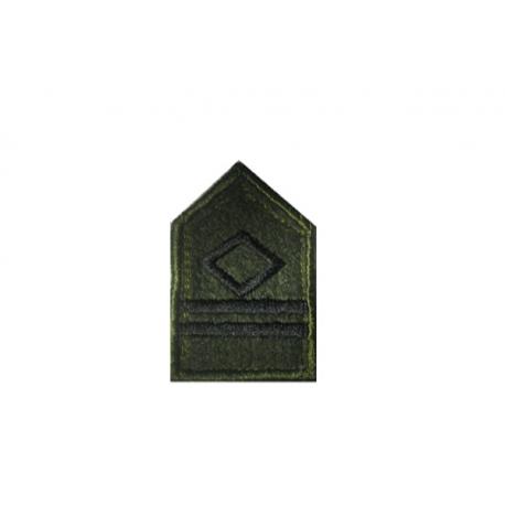 Lieutenant AVIATION lapel (WITH SKRATS)