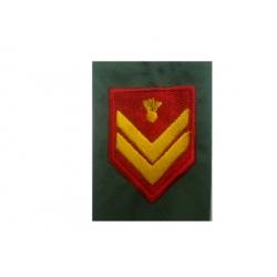 Epaulet sergeant Supervisors STOLIS (PAIR)