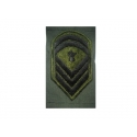 Epaulet JACKET sergeant SCHOOL (PAIR)