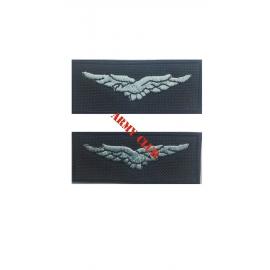 Couple in aviation uniform