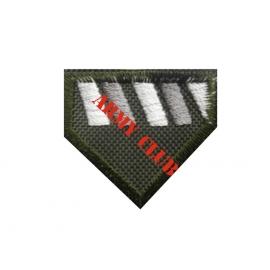 Σήμα πέτου Δοκίμων Αξιωματικών πληροφορικής με σκράτς